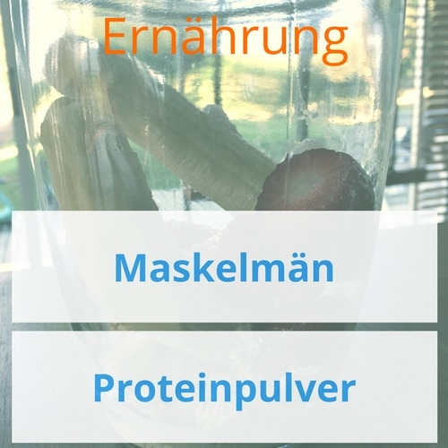 Hintergrundinformation zu den Maskelmän Produkten und veganen Proteinquellen