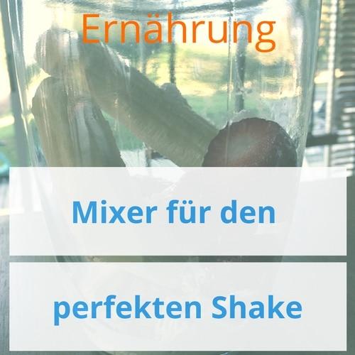 Für den perfekten Protein-Shake – Stabmixer, Standmixer und Shaker! Update 2019